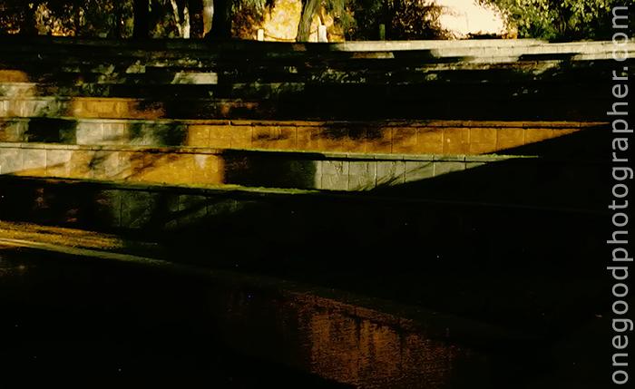 gwc_20081204_3484-copy