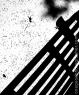 bench_shadow_0600-copy