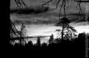bw_sunset_1981-copy