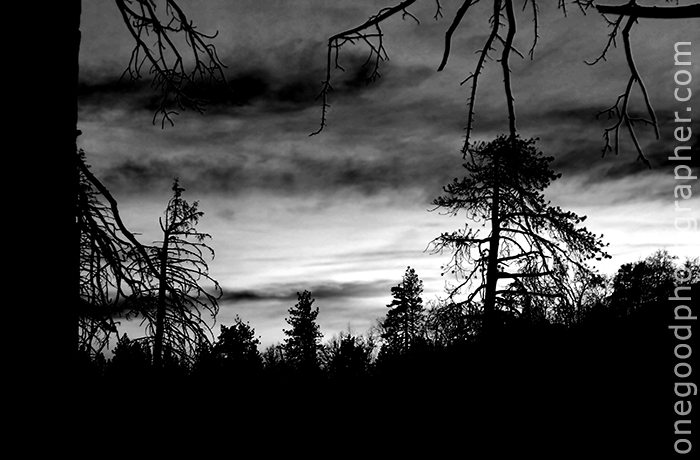 bw_sunset_1981-copy