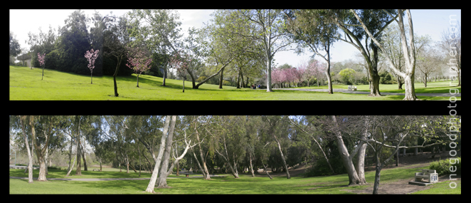 centralpark1