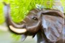 Elephant_61409_1512