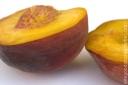 Peach_070509_1595