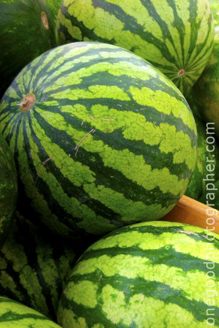 Watermelon_1360