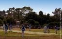 Cricket_090830_2101