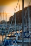 DanaPoint_3369