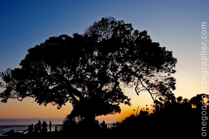 Sunset_1495
