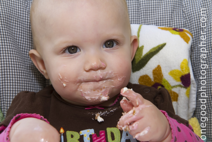Lily's 1st Birthday